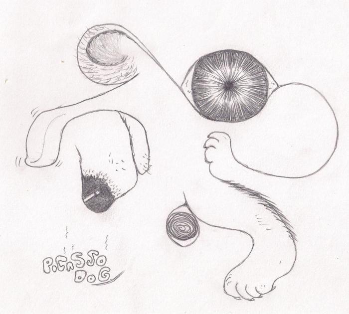 dr#9 picasso dog
