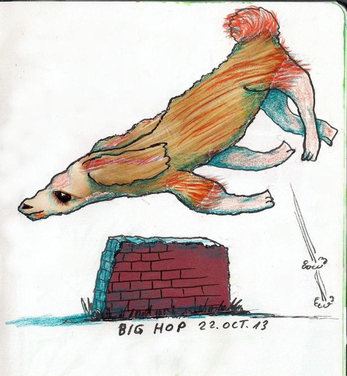 day4 drawing#8 ff- big hop 22-10-13