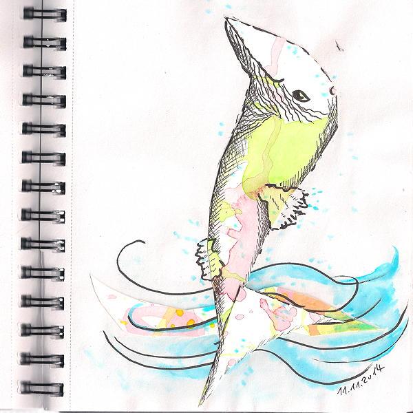 20141111 fish 75dpi