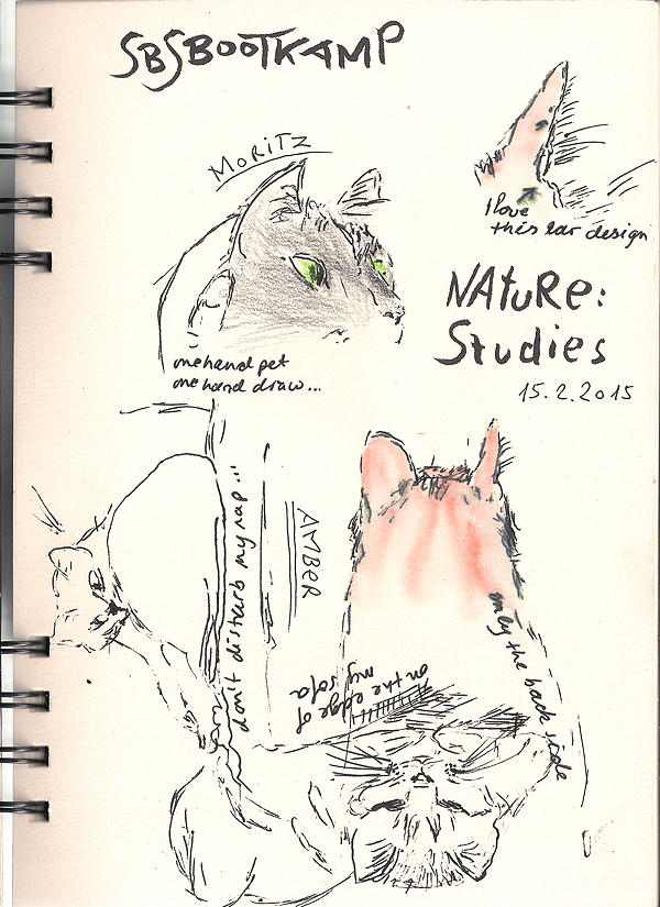 20150215 nature studies - my cats 75dpi
