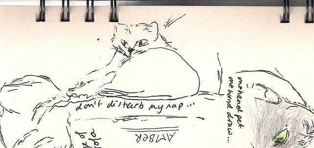 20150215 nature studies - my cats turned 75dpi