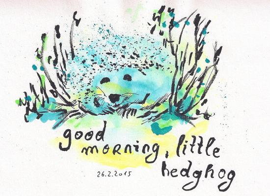 20150226 good morning little hedgehog 75dpi