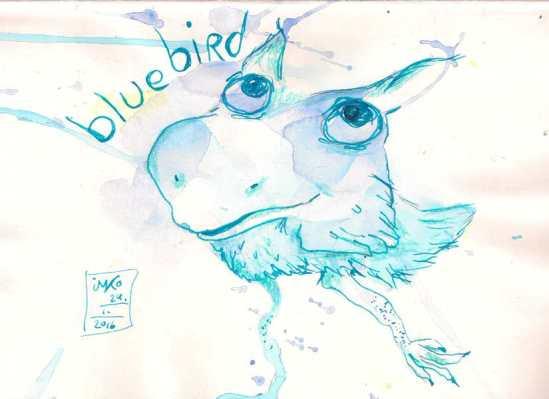 20160124 blue bird 52%