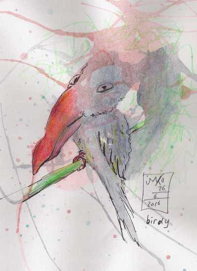 20160626 birdy 52%